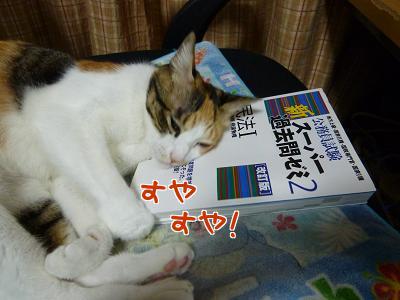 P1070981編集②.jpg