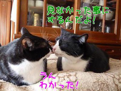 P1090276編集②.jpg