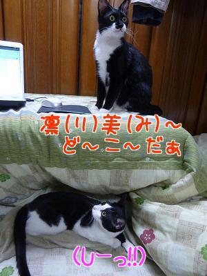 P1090711編集②.JPG