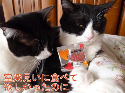 P1100319編集②.jpg