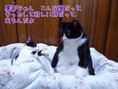 P1100739編集②.jpg