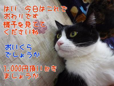 P1110369編集②.jpg