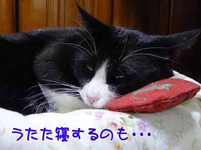 P1110642編集②.jpg