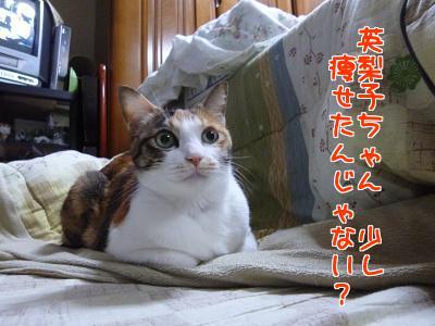 P1120327編集②.jpg