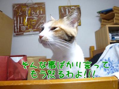 P1120332編集②.jpg