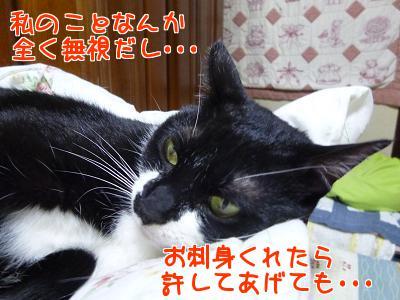 P1120690編集②.jpg