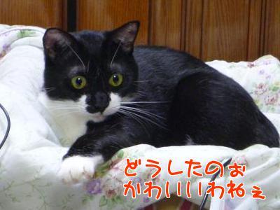 P1120843編集②.jpg