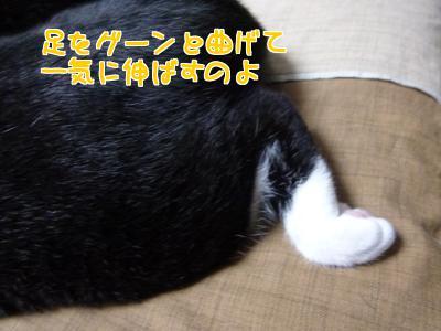 P1130486編集②.jpg