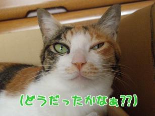 P2203846編集.jpg