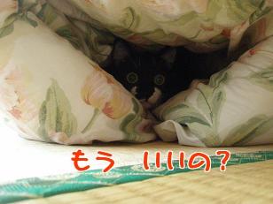 P5032726編集②.jpg