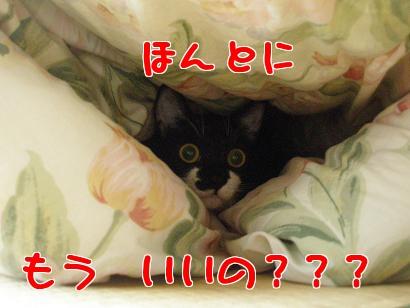 P5032728編集②.jpg