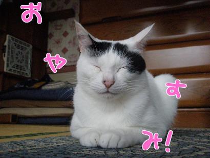 P5032757編集②.jpg