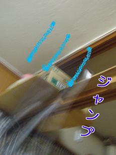 P6013836編集②.jpg