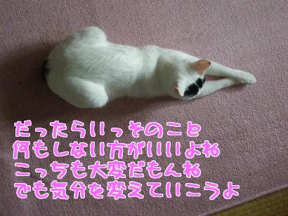 P6033880編集②.jpg