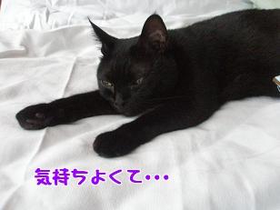 P7185336編集②.jpg