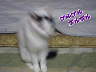 PC201260編集②.jpg