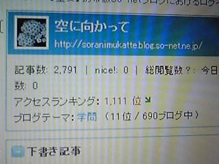 101112_1135~01.JPG