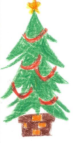 モミの木.jpg