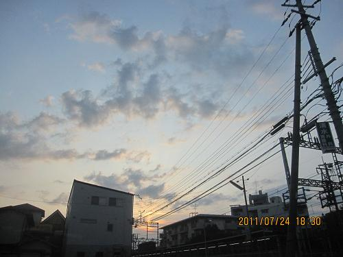 IMG-c_5929.JPG