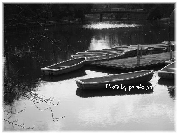 PICT0014.jpg