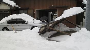 P1000587雪害.JPG