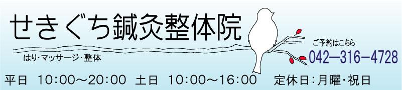 せきぐち鍼灸整体院.jpg