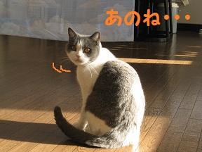 ありがとっと (2).jpg