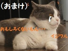 ごろごろ、ぴー(3).jpg