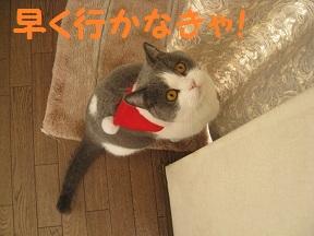 はやく~ (2).jpg
