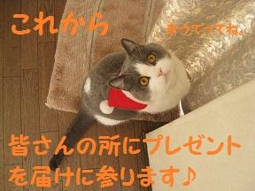 はやく~ (3).jpg