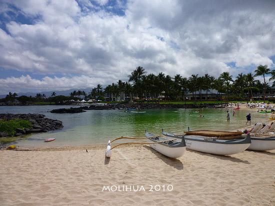 hawaii1 (2).jpg