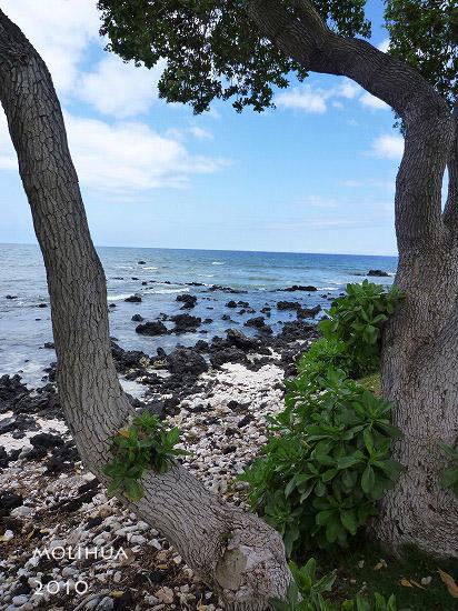 hawaii1 (6).jpg