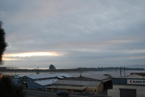 January6,2009Albany,CA1657pm.jpg