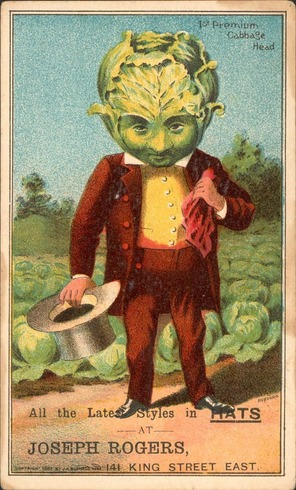cabbagehead.jpg