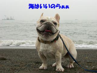 10のコピー.jpg