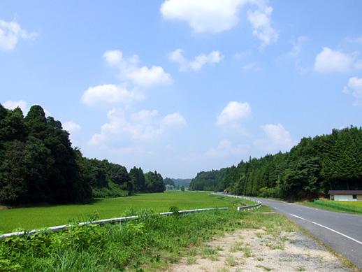 20100825-13.jpg
