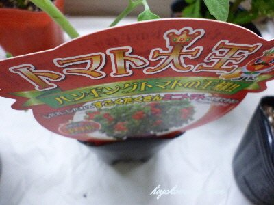 トマト大王.JPG