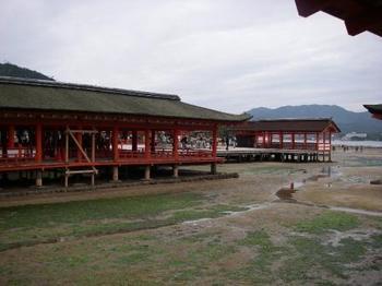 厳島神社わかめ.JPG