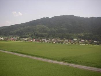 田圃.JPG