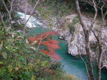 紅葉と大歩危峡.JPG