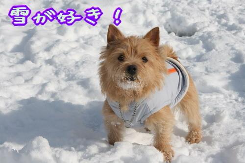 雪が好き!