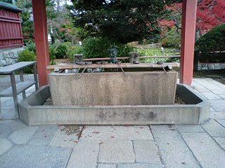 津島神社 (5).jpg