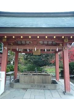 津島神社 (6).jpg
