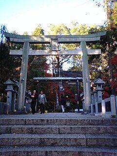 針綱神社 (14).jpg