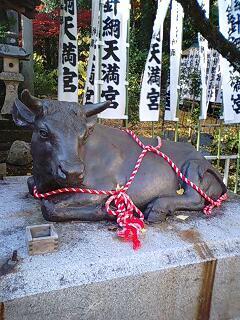 針綱神社 (2).jpg