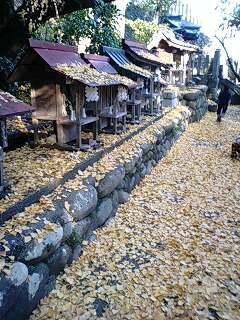 針綱神社 (3).jpg