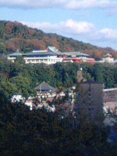 針綱神社 (5).jpg