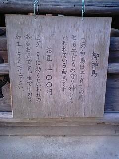 針綱神社 (9).jpg