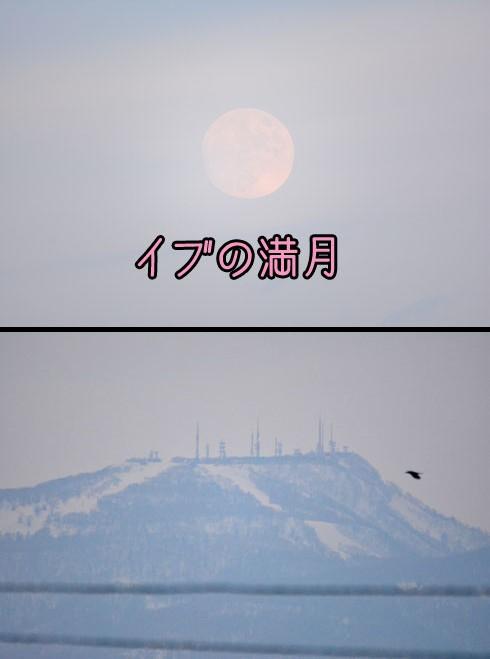 月の出です。