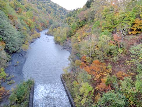錦秋の渓谷です。